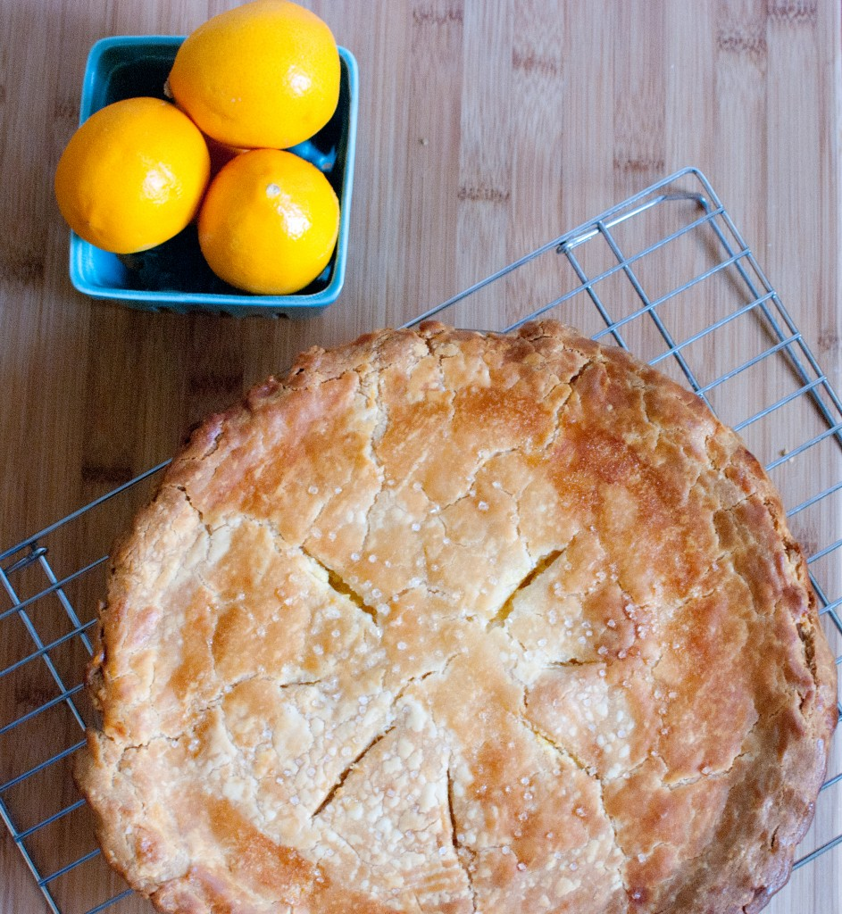 shaker meyer lemon pie save print a sweet tart pie